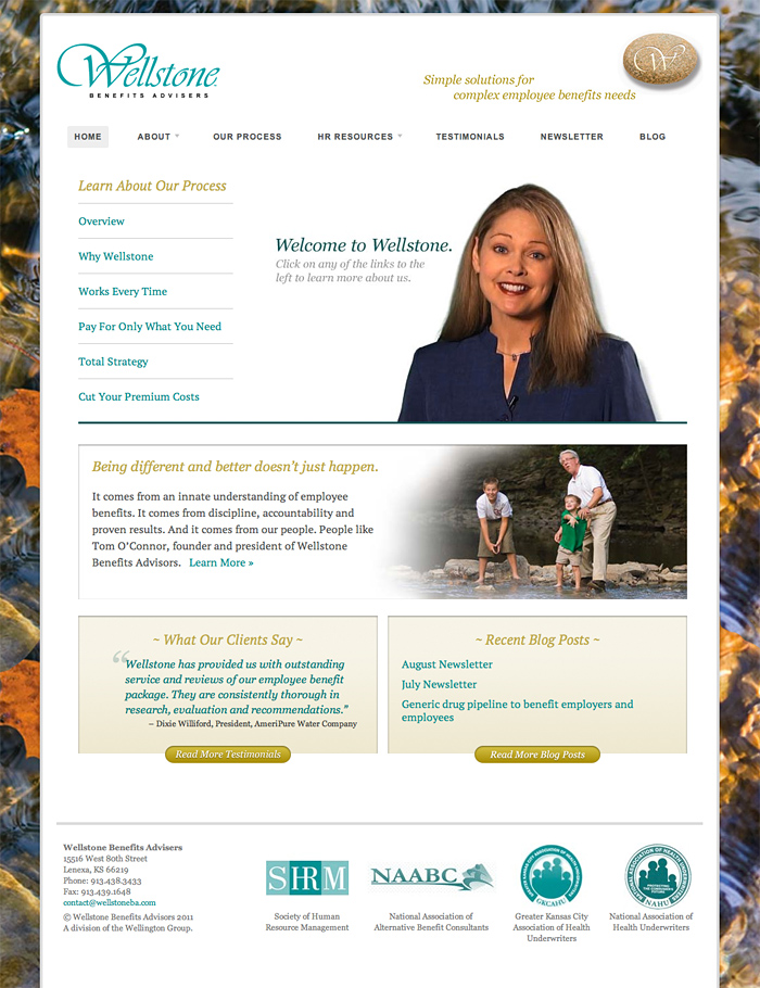 Wellstone Site Redesign